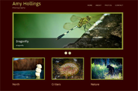 Thumbnail image for Amy Hollings